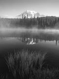 Grass Along Shore of Reflection Lake, Mount Rainier National Park, Washington, USA Photographic Print by Adam Jones