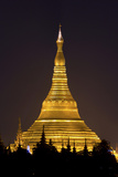 The Shwedagon Pagoda in (Rangoon) Yangon, (Burma) Myanmar Photographie par David R. Frazier