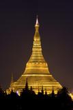 The Shwedagon Pagoda in (Rangoon) Yangon, (Burma) Myanmar Photographic Print by David R. Frazier