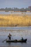 Fishing, Danube Delta, Tulcea, Romania Photographic Print by Martin Zwick