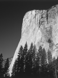 El Capitan, Yosemite National Park, California, USA Photographic Print by Adam Jones