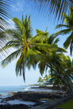 Beach, Kailua-Kona, Big Island, Hawa, USA Photographic Print by Douglas Peebles