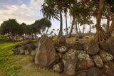 Hikina'akala Heiau, Wailua River State Park, Kauai, Hawaii, USA Photographic Print by Douglas Peebles