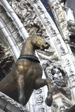 Horse Statue on San Marco, Venice, Italy Photographic Print by Terry Eggers