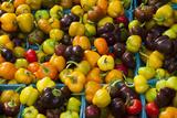 Fresh Organic Vegetables at a Farmers' Market, Savannah, Georgia, USA Photographic Print by Joanne Wells