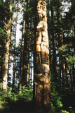 Totem Pole in Rainforest, Suka, Alaska, USA Photographic Print by Howie Garber