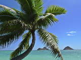 Mokulua Island, Lanikai, Kailua, Oahu, Hawaii, USA Photographic Print by Douglas Peebles