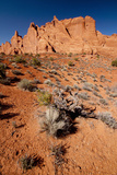 Devils Garden, Arches National Park, Utah, USA Photographic Print by Roddy Scheer