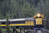 Alaska Railroad Train, Denali National Park, Alaska, USA Photographic Print by Gerry Reynolds