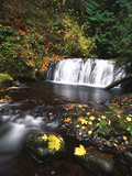 View of Multnomah Creek, Columbia River Gorge, Oregon, USA Photographic Print by Stuart Westmorland