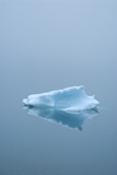 Iceberg Floats on Erik's Fjord in Southern Greenland Photographic Print by David Noyes