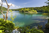 Lake Kozjak, Plitvice Lakes in the National Park Plitvicka Jezera, Croatia Photographic Print by Martin Zwick