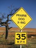 Speed Limit Road Sign, Oklahoma, USA Photographic Print by David Barnes