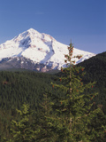 Mt Hood, Mt Hood National Forest, Oregon, USA Photographic Print by Stuart Westmorland