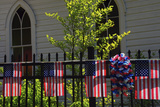 Draped Flags, July 4th, Parade, Ridgefield, Washington, USA, Photographic Print by Michel Hersen