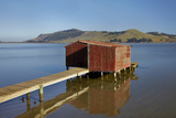 Boat Shed, Hoopers Inlet, Otago Peninsula, Dunedin, South Island, New Zealand Photographic Print by David Wall