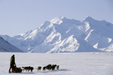 Sled Dogs, Park Ranger, Mount McKinley, Denali National Park, Alaska, USA Photographic Print by Gerry Reynolds