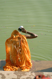 Hindu Woman in a Ritual Cleansing Bath at Pushkar Lake, Rajasthan, Pushkar, India Photographic Print by David Noyes