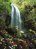 View of Waterfall with Autumn Leaves, Mt Hood National Forest, Oregon, USA Photographic Print by Stuart Westmorland