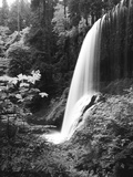 View of Middle North Falls, Silver Falls State Park, Oregon, USA Photographic Print by Adam Jones