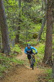 Mountain Biking the Whitefish Trail Near Whitefish, Montana, USA Stampa fotografica di Chuck Haney