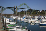 Marina with Pleasure Boats and Yaquina Bay Bridge, Newport, Oregon, USA Photographic Print by Jamie & Judy Wild