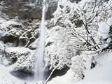 View of Multonmah Falls in Winter, Columbia Gorge Scenic Area, Oregon, USA Photographic Print by Stuart Westmorland