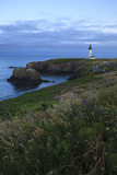 Historic Yaquina Head Lighthouse, Newport, Oregon, USA Photographic Print by Rick A. Brown