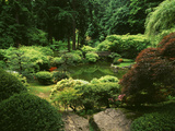 View of Strolling Pond Garden, Portland, Oregon, USA Photographic Print by Adam Jones