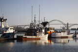Fishing Boats with Yaquina Bay Bridge in Background, Newport, Oregon, USA Photographic Print by Jamie & Judy Wild