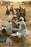 Pastoral Nomads at Annual Pushkar Camel Fair, Rajasthan, Raika, India Photographie par David Noyes