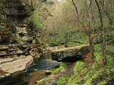 Raven Run Nature Sanctuary, Lexington, Kentucky, USA Photographic Print by Adam Jones