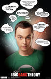 Big Bang Theory Sheldon Quotes Television Poster Plakater