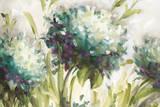 Hydrangea Field Kunst af Lisa Audit