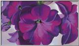Petunias, c.1925 Posters by Georgia O'Keeffe