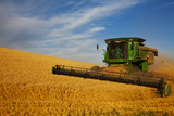 Combine Harvesting Wheat, Palouse Country, Washington, USA Photographic Print by Terry Eggers