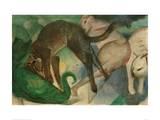 Cats Playing Impression giclée par Franz Marc