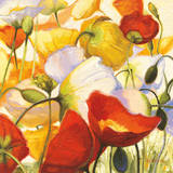 Poppies Up Close Posters by Shirley Novak