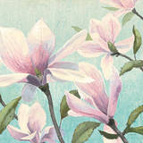 Southern Blossoms I Square Posters by James Wiens