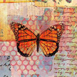 Homespun Butterfly IV Prints by Dominic Orologio