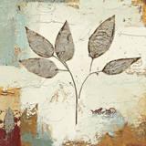 James Wiens - Silver Leaves III - Poster