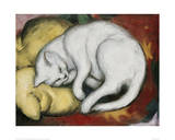 The White Cat Giclee Print by Franz Marc