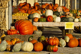 Farmer's Market, Autumn in Luling, Texas, USA Photographic Print by Larry Ditto