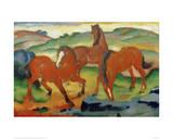 Red Horses Giclee-vedos tekijänä Franz Marc