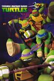 Tortugas Ninja Mutantes Adolescentes (grupo) Póster