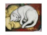Le chat blanc Impression giclée par Franz Marc