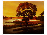 Evening Water I Lámina giclée premium por Graham Reynolds