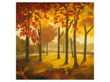 Maples at Dusk II Premium Giclee Print by Graham Reynolds