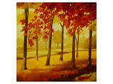 Maples at Dusk I Premium Giclee Print by Graham Reynolds