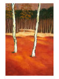 SilverBirch I Premium Giclee Print by Graham Reynolds